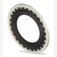 Image FJC, Inc. 4061 GM SEALING WASHER