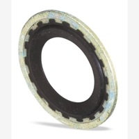 Image FJC, Inc. 4062 GM SEALING WASHER