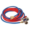 Image FJC, Inc. 6448 Red & Blue Hoses