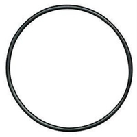Image Mag Instrument 108-000-041 HEAD O-RING